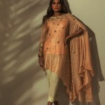 Stylish Eid Festive Collection 2018 By Rozina Munib (2)