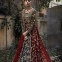 Exclusive Bridal Dresses Color Combination in Pakistan 2018 (4)