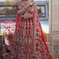 Anamta Couture Latest Bridal Photo Shoot of Actress Nimra Khan (5)