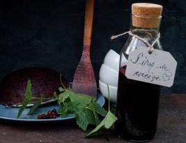 Sirop de coacaze fara fierbere/No Boil Blackcurrant Syrup