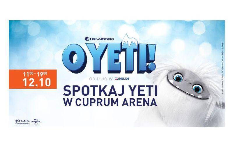 Spotkaj YETI w Cuprum Arena