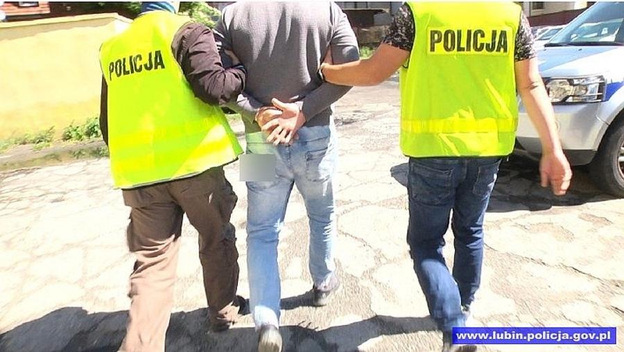 Lubinianin podejrzany o kradzieże pojazdów na terenie Niemiec zatrzymany