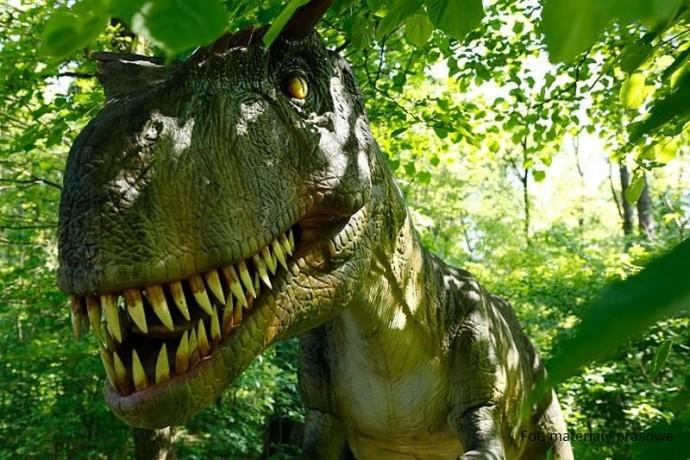 Najlepsze parki rozrywki w Polsce - Dinoparki