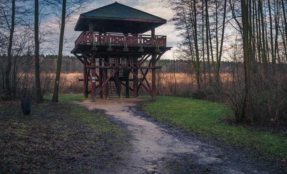 Miejsca na spacer w okolicy Warszawy - Chojnowski Park Krajobrazowy