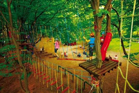 Park Linowy w Podzamczu oferuje 2 trasy – czerwoną, składającą się z 33 przeszkód o łącznej długości 400 m, dla osób powyżej 140 cm wzrostu, i zieloną dla dzieci do 150 cm wzrostu z 10 przeszkodami o łącznej długości 100 m.