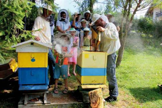 W pasiekach subregionu poznamy życie pszczół – wycieczka rodzinna w Kamiannej.