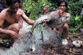 Ryby należą do podstawowych składników diety Dajaków.