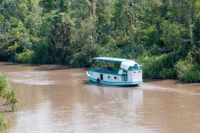 Klotok – w praktyce jedyny środek transportu na przecinających dżunglę rzekach Borneo.