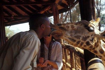 Giraffe Centre, Nairobi, fot. Paweł Wroński