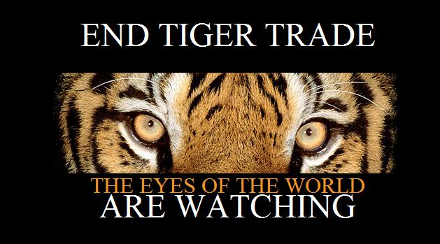 End Tiger Trade