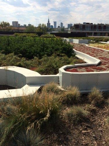Widok z ogrodów na dachu CNK na warszawski Manhattan, fot. Paweł Wroński