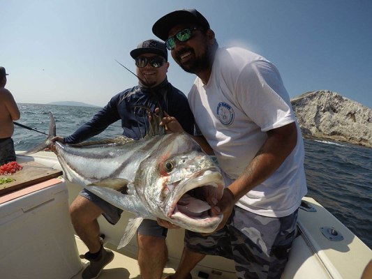 Rooster Fish on Virgin Mary