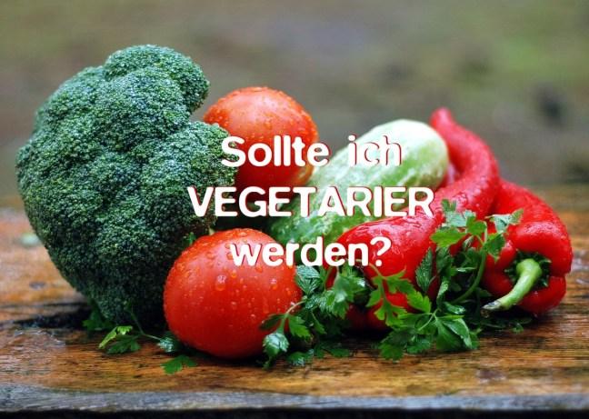 Sollte ich Vegetarier werden?