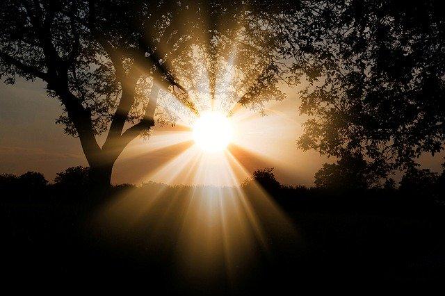 Sonnenstrahlen können helfen, Vitamin D3 zu bilden.