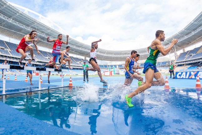 Leistungssportler brauchen gezielte Ernährungsempfehlungen