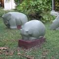 Animal escondido: Conversatorio con Federico Ruvitoso sobre las obras de Máximo Maldonado