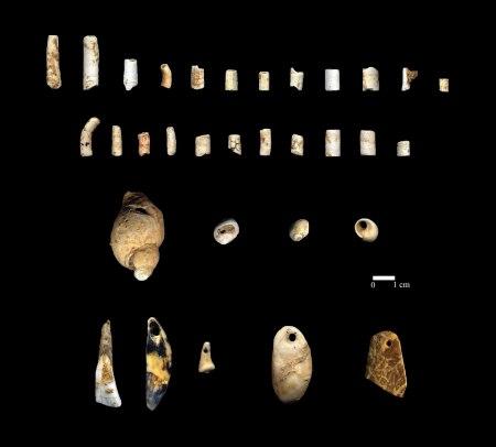 Parure, Magdalénien Inférieur, Grotte du Taillis des Coteaux
