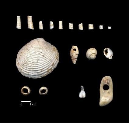 Parure, Magdalénien Moyen, Grotte du Taillis des Coteaux