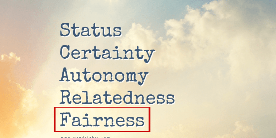 SCARF Model; Magda Tabac; Status; Certainty; Autonomy; Relatedness; Fairness