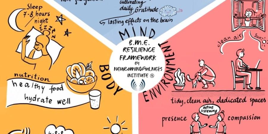 Neuroscience; Mindfulness; the NeuroMindfulness Institute;