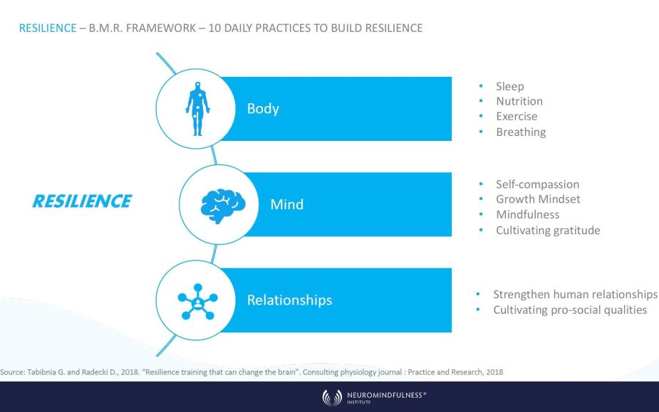 Resilience and the BMR Framework edited - Body-Mind-Relationships: A Framework for Resilience