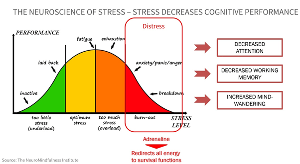 image 7 - The good side and the dark side of stress. The neuroscience behind it and its impact on our cognitive performance.