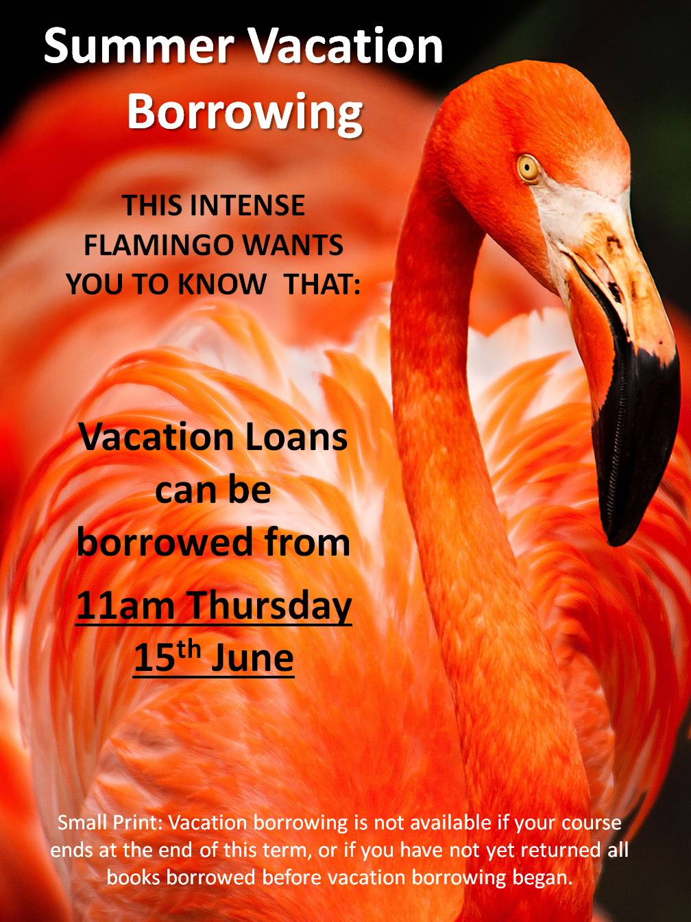 Summer Vacation Borrowing