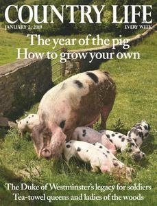 Country Life UK - January 02, 2019