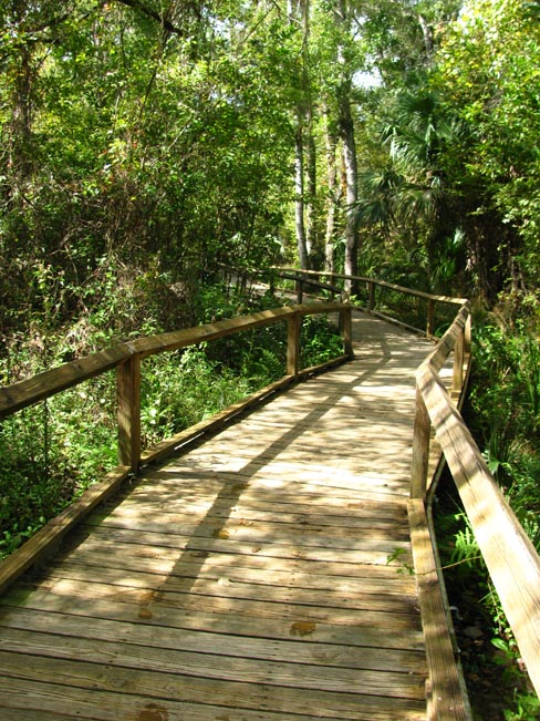 There are boardwalks the whole way back to the start
