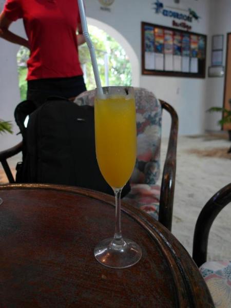 "Коктейла за ""добре дошли"" в Ембуду Вилидж на Малдивите"