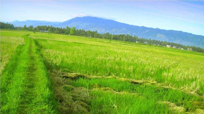 Desa Wisata Sutopati Kajoran