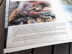 Kerr_and_Downey_Classic_NZ_Js_Brox-1489