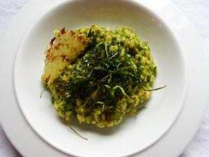 rucola-mokka-risotto mit bergkäse-crunch