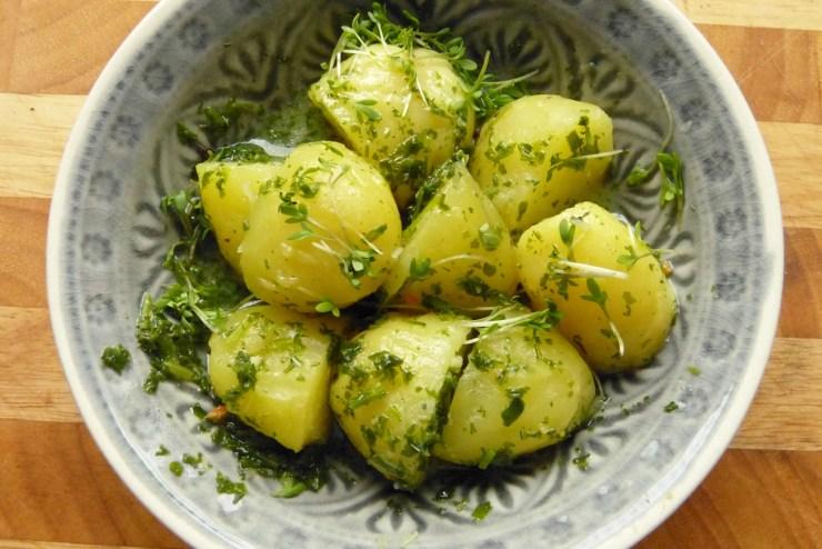 pellkartoffelsalat-grüne-sauce