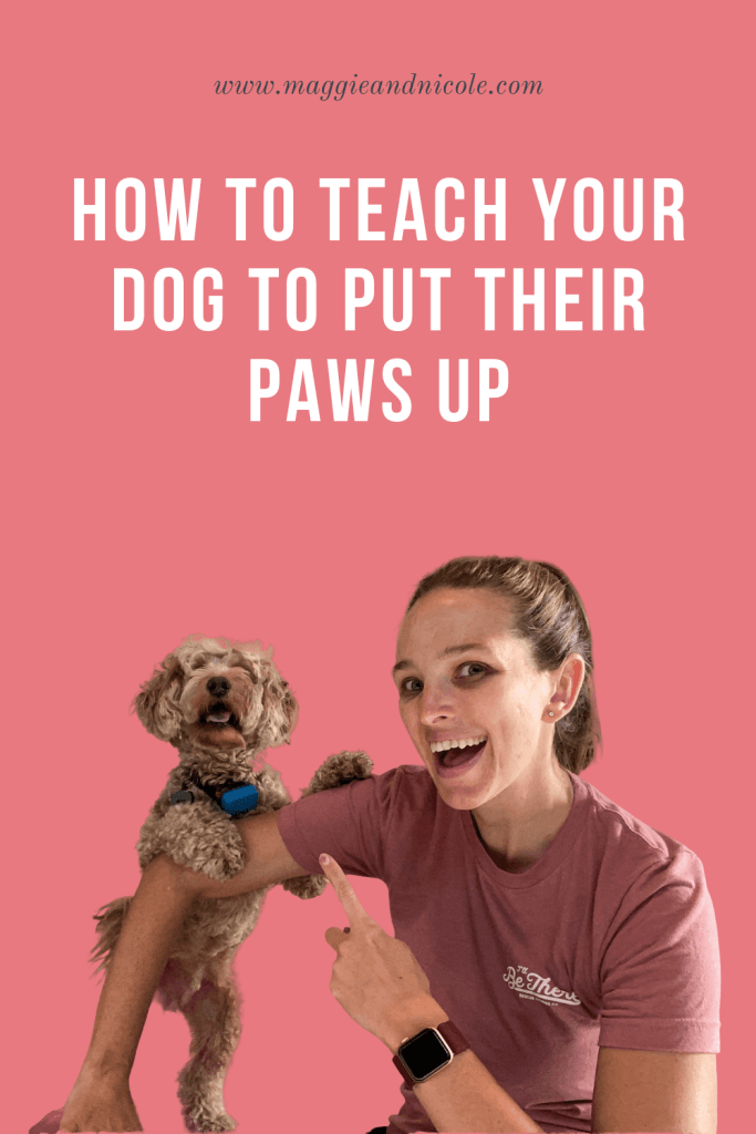 Teaching your dog paws up