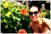 Silversands Resort, beautiful hibiscus