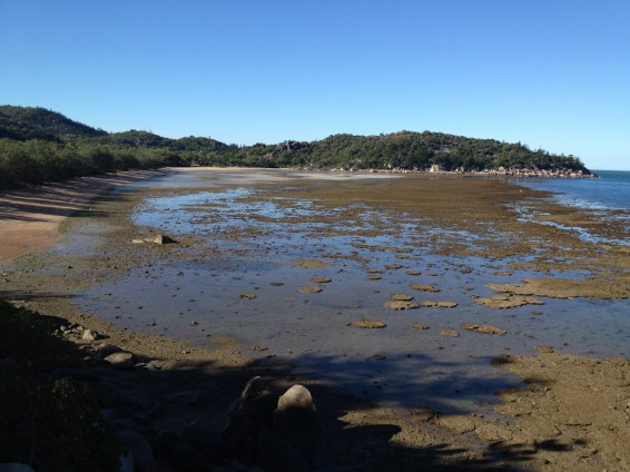 Geoffrey Bay beach and reef flat at low tide.