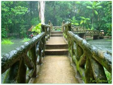 Jardim Botânico de Belém