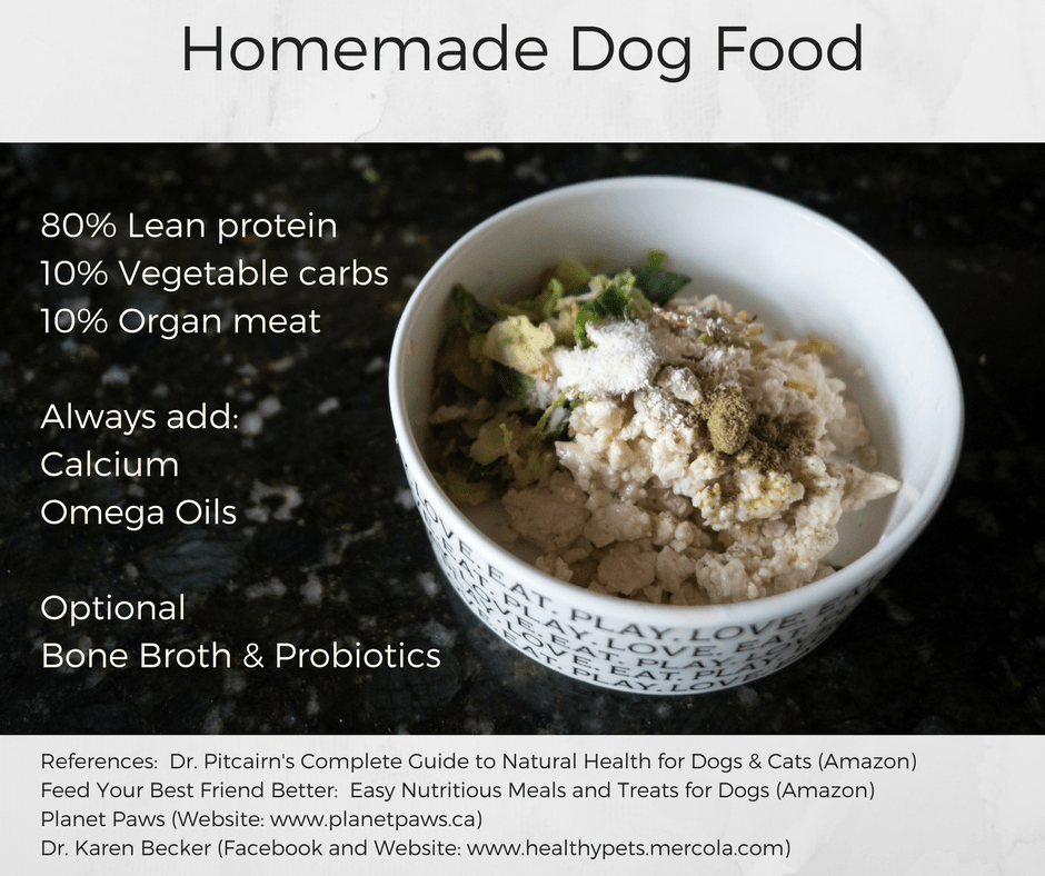 Basic foundation for homemade dog food maggielovesorbit basic foundation for homemade dog food forumfinder Image collections