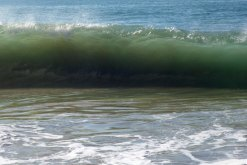 Wave dressed in green