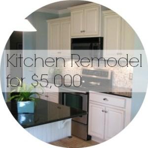 $5000 Kitchen Remodel