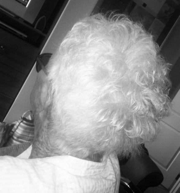 Beautiful, White Hair