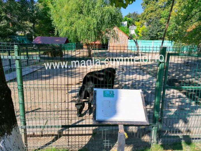 Grădina Zoologică Târgoviște