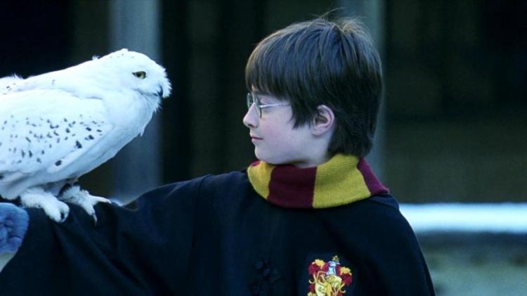 Test Harry Potter: ¿Adivinarás a que saga de películas pertenece la frase?