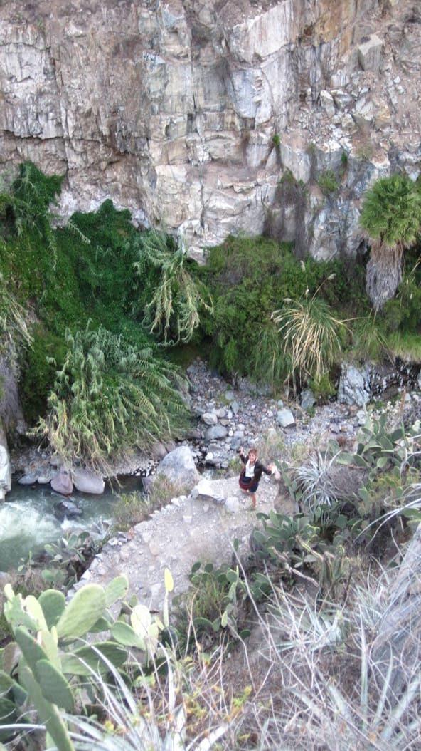 Canyon de la Colca - Perou - 3