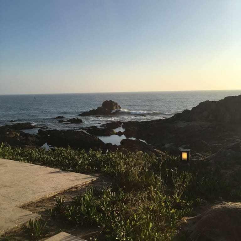 Casa de cha da boa nova restaurant - porto - portugal 1