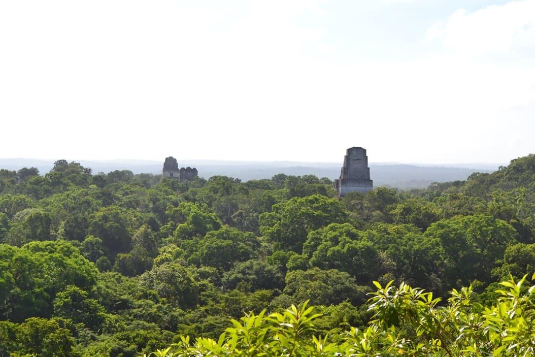 Tikal - guatemala 12
