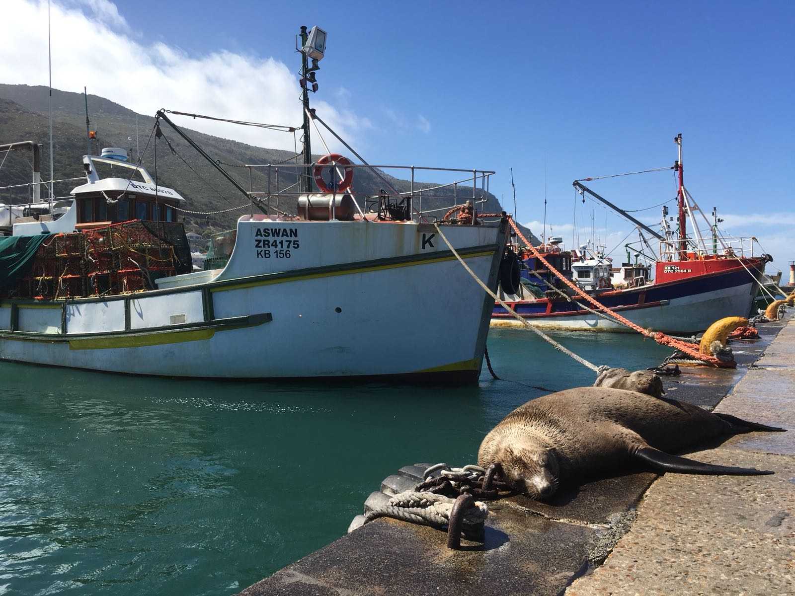 Kalk Bay - Cape Town - AFS 6