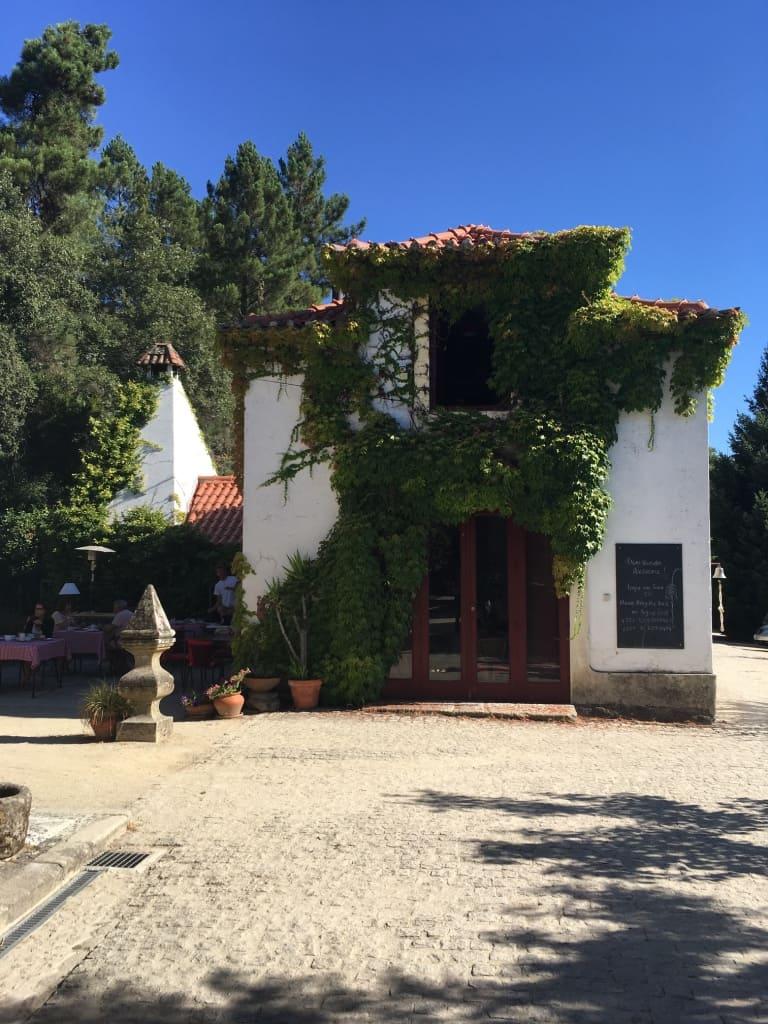 casa agricola da levada - villa real - portugal 5
