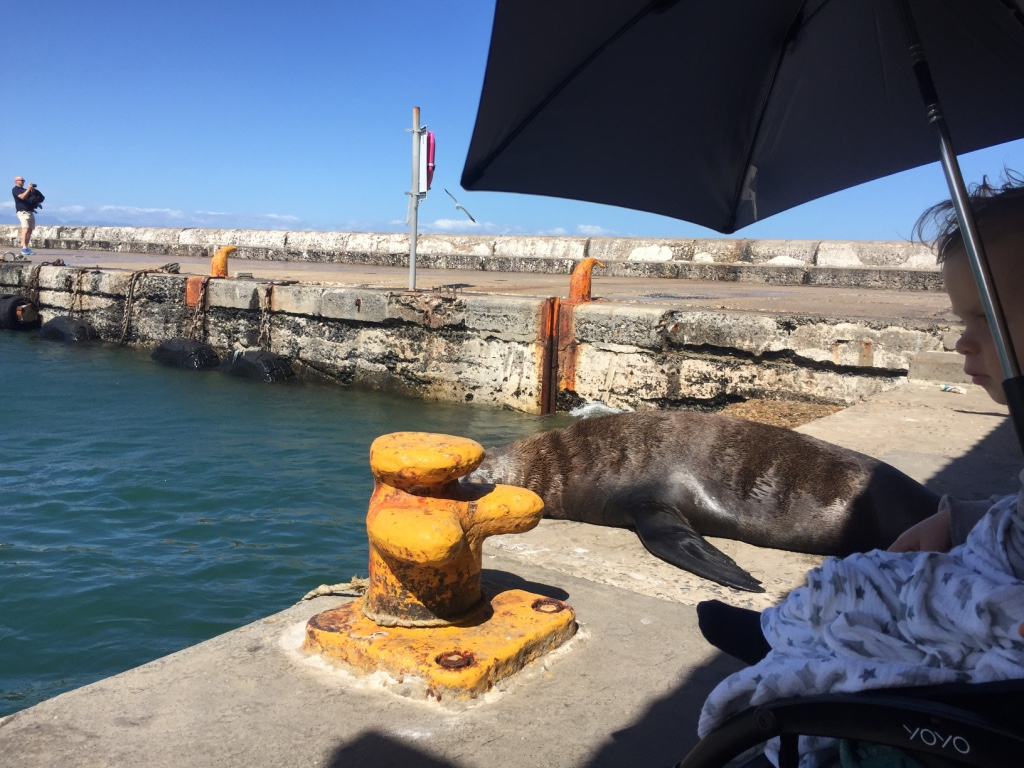 Kalk Bay - Cape Town - AFS 4